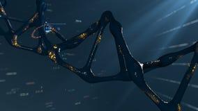 转动的脱氧核糖核酸分子 基因研究和工程学的概念 股票录像