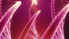 转动的脱氧核糖核酸无缝的圈 皇族释放例证