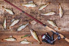 转动,鱼和诱饵在木背景 免版税库存图片