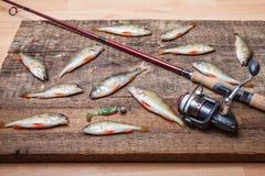转动,鱼和诱饵在木背景 免版税库存照片