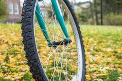 轮子、自行车和美丽的叶子 免版税图库摄影