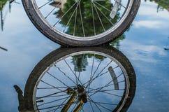 轮子的Reflextion 库存图片