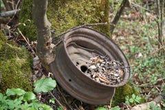 轮子被忘记的外缘  图库摄影