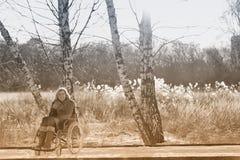 轮椅的愉快的妇女在雪 免版税库存照片