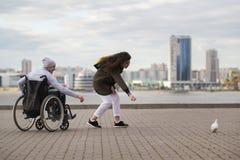 轮椅的残疾年轻人有少妇哺养的鸽子的 库存图片