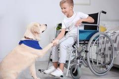轮椅的男孩有服务狗的 免版税库存照片