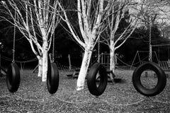 轮胎在操场摇摆 免版税库存图片