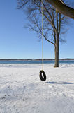 轮胎摇摆在冬天 免版税库存图片