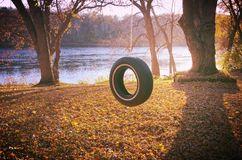 轮胎摇摆在秋天 库存图片