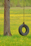 轮胎摇摆以黄色 免版税库存照片