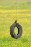 轮胎摇摆以黄色 库存照片