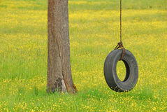 轮胎摇摆以黄色 免版税库存图片