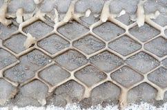 轮胎的保护者背景踪影在湿解冻的雪的 图库摄影