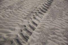 轮胎的样式在沙子的 免版税库存照片