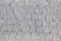 轮胎跟踪在混凝土的轮胎标记作为抽象纹理 库存图片