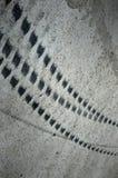 轮胎跟踪 免版税库存照片