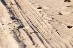 轮胎踩的踪影 库存图片