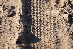 轮胎踩的踪影 库存照片