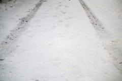 轮胎轨道在路的冬天 免版税库存照片