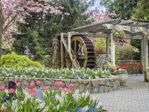 水轮Butchart庭院,维多利亚不列颠哥伦比亚省 库存图片