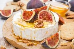 软制乳酪乳酪用蜂蜜、无花果和薄脆饼干在一个木板 图库摄影