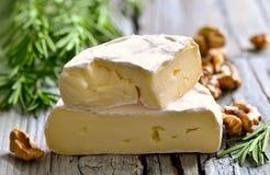 软制乳酪乳酪 库存图片