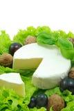 软制乳酪 免版税图库摄影