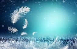 软性和生气勃勃概念-羽毛 免版税库存照片