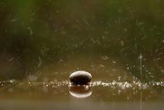 软性在雨中聚焦了禅宗石头,一个岩石 免版税库存照片