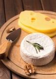软的乳酪盘子 库存照片