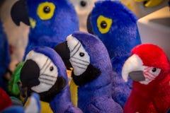 软的玩具鹦鹉 免版税库存图片