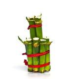软的竹子 免版税库存图片