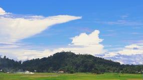软的米领域和天空 免版税库存照片