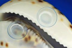 软的隐形眼镜 免版税库存图片
