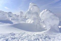 软的霜喜欢头 免版税库存照片
