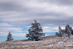 软羊皮的山冬天高涨4 免版税库存照片