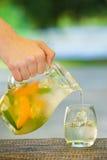软饮料和果子 库存照片