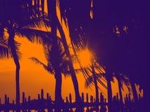 轰隆Saen海滩春武里市泰国剪影  免版税库存图片