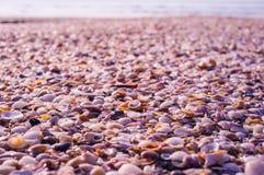轰击在海滩的背景 免版税图库摄影