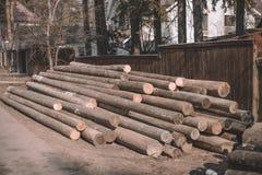 轻率冒险砍的树,原木小屋,日志说谎束 免版税库存图片