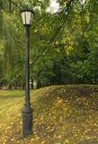 轻的公园街道 免版税库存照片