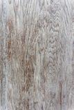 轻的垂直的木背景纹理 图库摄影