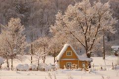 轻的早晨玫瑰色冬天 免版税图库摄影