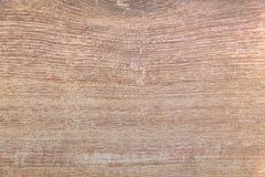 轻的橡木褐色五谷纹理背景 自然难看的东西轻拍 免版税库存图片