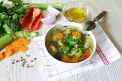 轻的蔬菜汤和成份 免版税库存图片