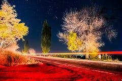 轻的足迹在满天星斗的天空下 图库摄影
