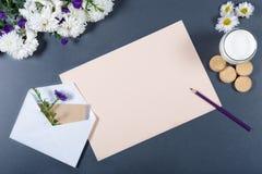 轻的静物画-米黄纸,白色和紫色chrysa板料  库存图片