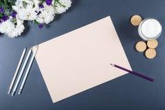 轻的静物画-米黄纸,白色和紫色chrysa板料  免版税库存图片