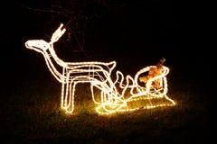 轻的驯鹿和圣诞老人雪橇 免版税库存照片