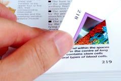 轻碰下页 免版税库存照片